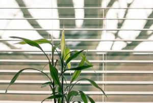 Motorized Blinds & Shades in Dagsboro, DE