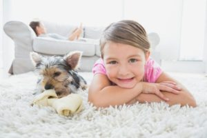 Carpet Problems That Can Come Up During Summer